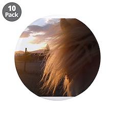 "Icelandic Horses 3.5"" Button (10 pack)"