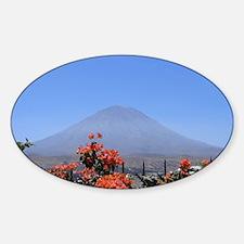 Volcano Misti Decal