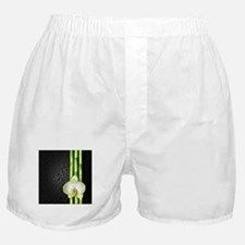 Bamboo Orchid Boxer Shorts