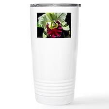 Green Hybrid Cattleya O Travel Mug