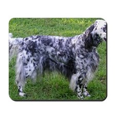 English Setter full Mousepad