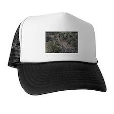 Fawn 4 Trucker Hat