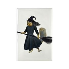 Squirrel Witch Rectangle Magnet