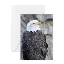 The Eagle Stands Alone Greeting Cards
