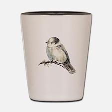 Cute Friendly Canada, Gray or Grey Jay Shot Glass