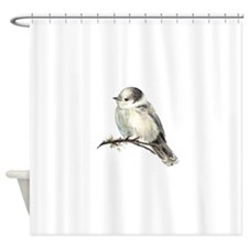 Cute Friendly Canada, Gray or Grey Jay Shower Curt