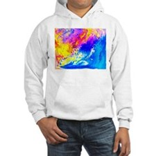 Beautiful weather Hoodie