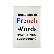 french words Rectangle Magnet