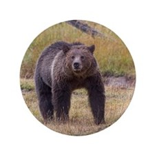 "Yellowstone Grizzly 3.5"" Button"