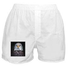 Bald Eagle Boxer Shorts