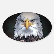 Bald Eagle Decal