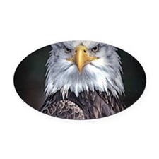 Bald Eagle Oval Car Magnet