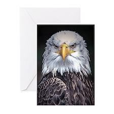 Bald Eagle Greeting Cards