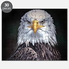 Bald Eagle Puzzle