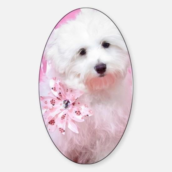 Happy Pink Maltese Sticker (Oval)