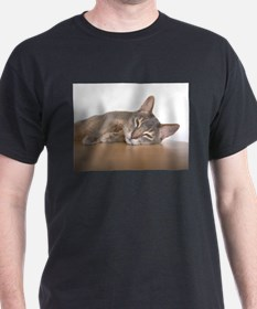 abyssinian blue laying T-Shirt