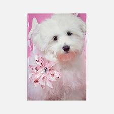 Happy Pink Maltese Rectangle Magnet