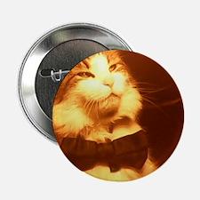 """Bowtie cat #5 2.25"""" Button"""