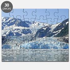 Where Glacier Meets Ocean Puzzle