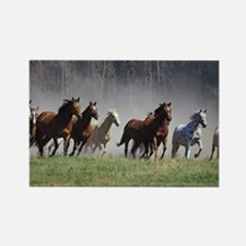 Galloping Horses Rectangle Magnet