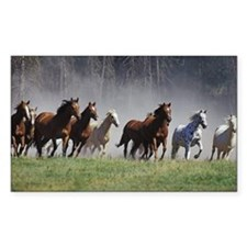 Galloping Horses Decal