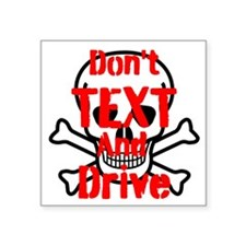 Dont Text and Drive Sticker