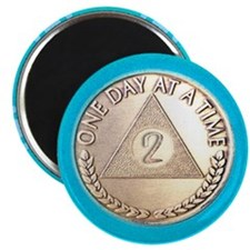 AA 2 Year Chip Alternative Magnet
