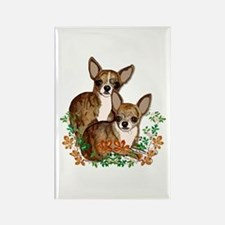 Chihuahua Brindle Smooths Rectangle Magnet