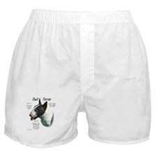 Colored Bull Terrier  Boxer Shorts