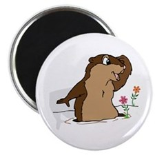 Groundhog Day Shadow Magnets
