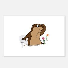 Groundhog Day Shadow Postcards (Package of 8)