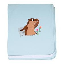 Groundhog Day Shadow baby blanket