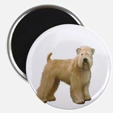 Wheaten T (stand) Magnet