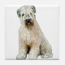 Wheaten Terrier (8) - sit Tile Coaster