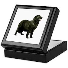 Newfoundland (black stand) Keepsake Box