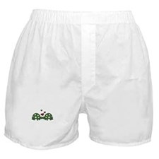 Love Turtles Boxer Shorts