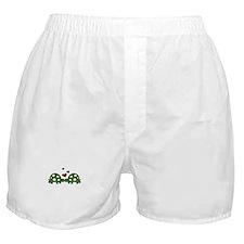 Love Turtles Boxer Shorts