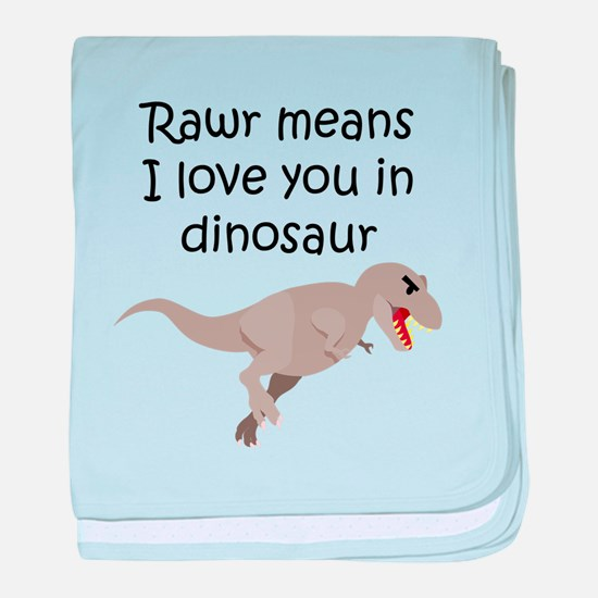 Rawr Means I Love You In Dinosaur baby blanket