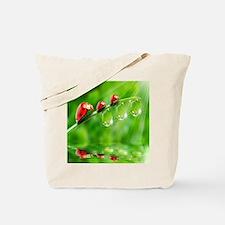 Ladybug Family Tote Bag