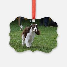 Springer Spaniel  Dog Ornament
