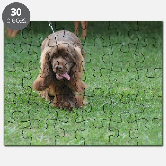 Cute Sussex Spaniel Puzzle