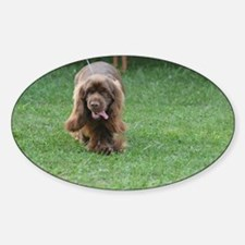 Cute Sussex Spaniel Sticker (Oval)