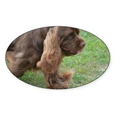 Strutting Sussex Spaniel Decal