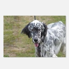 Sweet English Setter Dog Postcards (Package of 8)