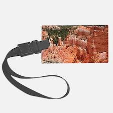 Bryce Canyon, Utah, USA 16 Luggage Tag