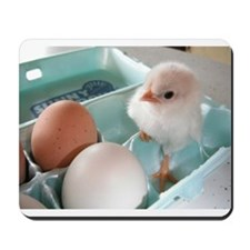 Two Eggs and a Chick Mousepad