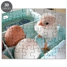 Two Eggs and a Chick Puzzle