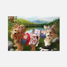The Park-Yorkie/Biewer Rectangle Magnet