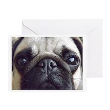 Bella pug Greeting Card