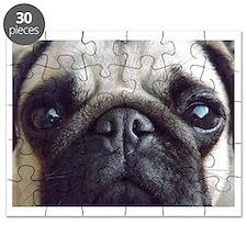 Bella pug Puzzle